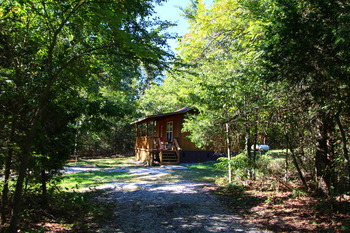 Enjoy the natural surroundings at Ozark Cabins.
