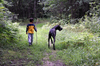 Boy and his dog hiking at Cobtree Vacation Rental Homes.