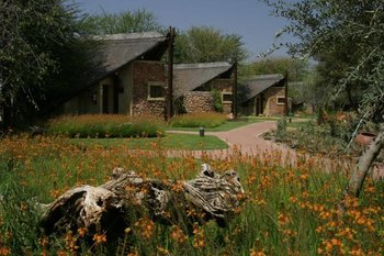 Exterior view of Tau Game Lodge.