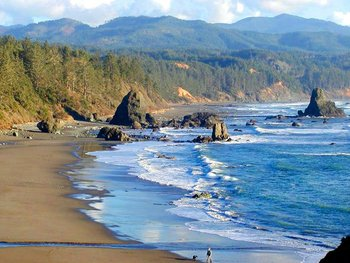 Port Orford Bay near WildSpring Guest Habitat.