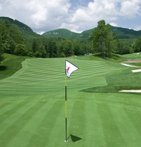Golf Course at The Greystone Inn