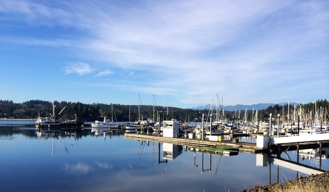 Hotels Close To Seattle Port