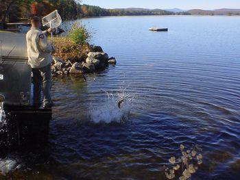 Stocking the lake at Highland Lake Resort.