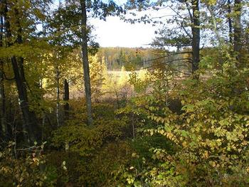 Hunting at North Country Vacation Rentals.