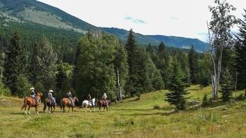 Horseback riding at Tod Mountain Ranch.