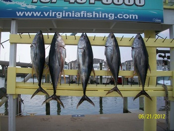Virginia Beach Fishing Center near Best Western PLUS Oceanfront Virginia Beach.