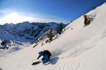 Wasatch Back Country at Snowpine Lodge