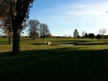 Tagalong Golf and Resort near Stout's Island Lodge.