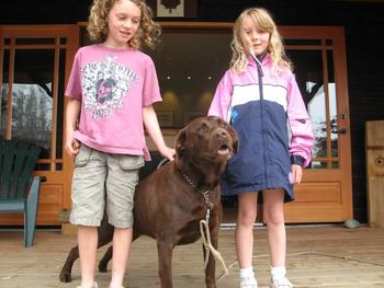 Bring your pet to The Cabins at Terrace Beach.