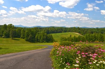 Scenic views at Dahlonega Spa Resort.