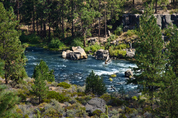 Walk the 2.5 Mile Loop along the rippling Deschutes River at Mount Bachelor Village Resort.