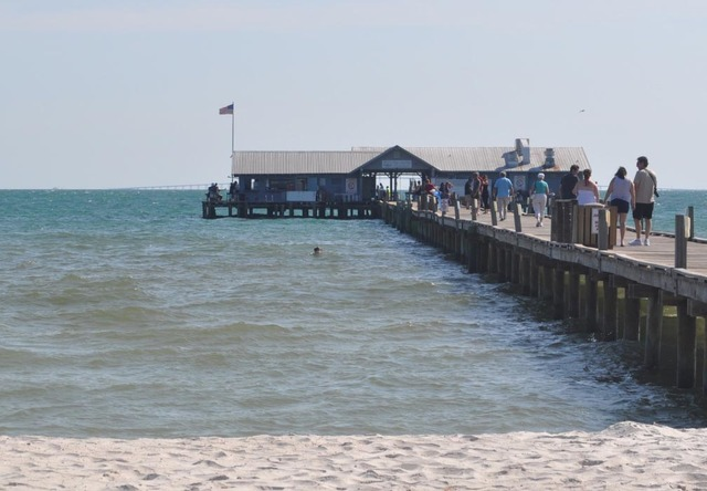 Lizzie Lu S Island Retreat Reviews