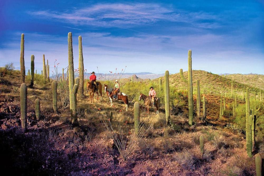 Horseback riding at Rancho De Los Caballeros.