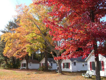 Exterior view of Cozy Cottages.