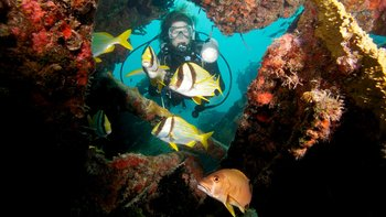 Scuba diving near Coral Bay Resort.