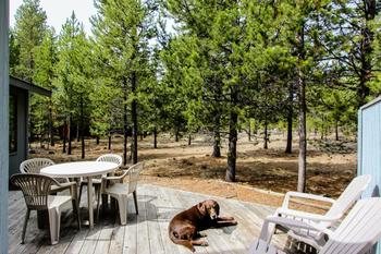 Pet friendly accommodations at Vacasa Rentals Sunriver.