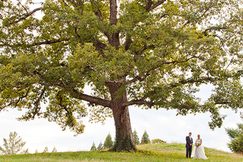 Bride and groom under tree. Camden Littleton Photography