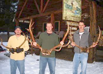 Antlers at Silver Spur Outfitters