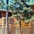 Juniper Cabin Exterior View at Lodge of Whispering Pines