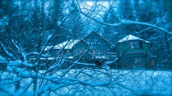 Enchanted winter at Spillian.
