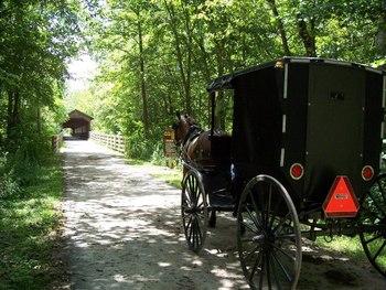 Buggy ride at Sunset Ridge Log Cabins.