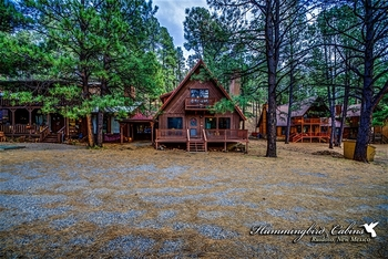 Exterior view of Hummingbird Cabins - Timberline Townhouse Vacation Rental