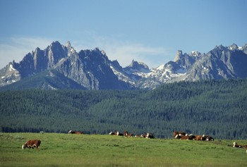 View of the Sawtooth Mountains at Triangle C Ranch Log Cabins.