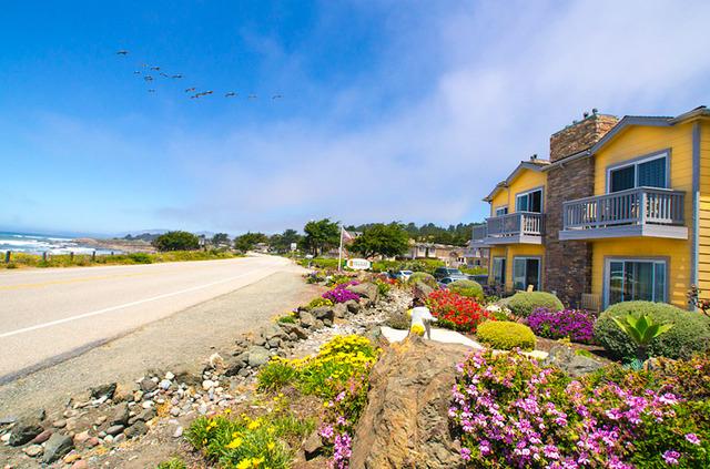 pelican inn and suites cambria ca resort reviews. Black Bedroom Furniture Sets. Home Design Ideas