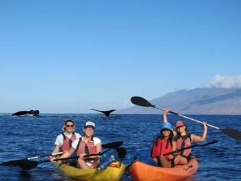 Kayaking and whale watching at Lumeria Maui.