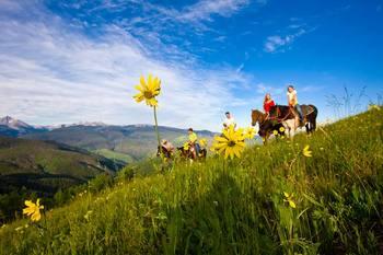 Horseback riding at Torian Plum Resort.