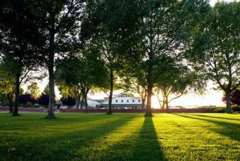 The Grand Lawn of the SummerWood Inn, with a view of SummerWood Winery. (across the street on Arbor Road)