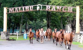 Horseback riding at Malibu Dude Ranch.