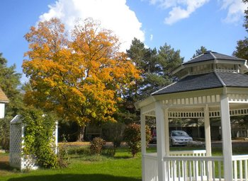 Outdoor gazebo at Parkwood Lodge.