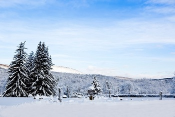 Honor's Haven is completely surrounded by this beautiful landscape of wintery, rolling mountains.