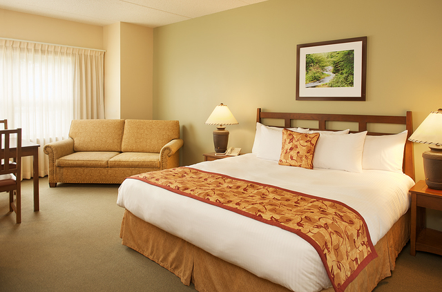 Stonewall Resort Roanoke Wv Resort Reviews