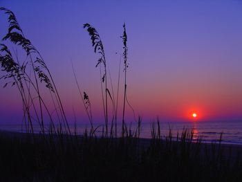 Sunrise on the beach at Mar Vista Resort Grande.