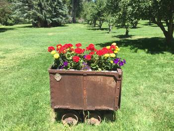 Container gardening at River Orchard Place.