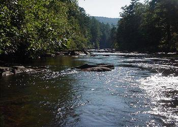 TOCCOA RIVER--GREAT FISHING FROM THE BANKS IN FRONT OF PICKS RIVERSIDE RETREAT