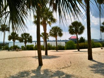 Beautiful Beaches at  Charleston Harbor Resort