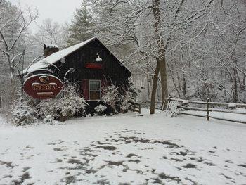 Shenandoah Valley Resorts And Lodges Resortsandlodges Com