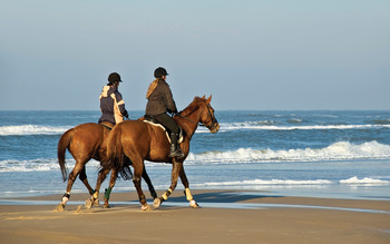 Horseback riding on the beach near Sonoma Coast Villa & Spa Resort.
