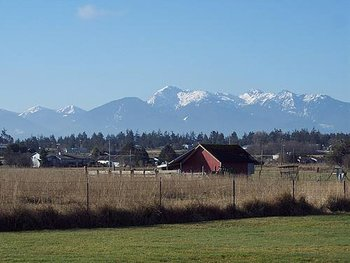 Beautiful Olympic Mountains View at Juan de Fuca Cottages