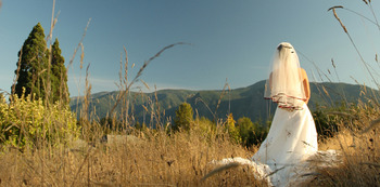Weddings at  Carson Ridge Cabins