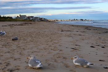 The beach at Mariner Resort.