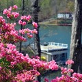 Lake View at Lodge On Lake Lure 