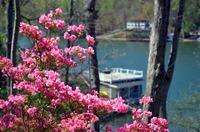 Lodge On Lake Lure Lake Lure Nc Resort Reviews