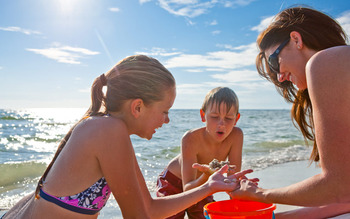 Beach exploration at TradeWinds Island Grand.