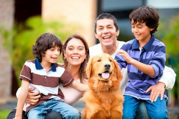 Pet friendly accommodations at The Residences at Biltmore.