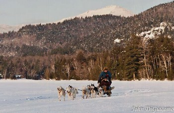 Dog sledding at Northwoods Inn.