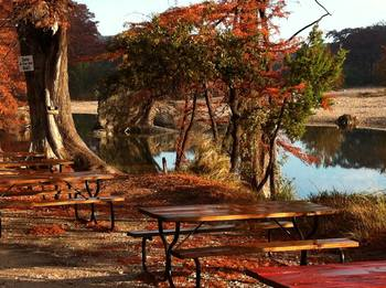 Picnic tables at Neal's Lodges.